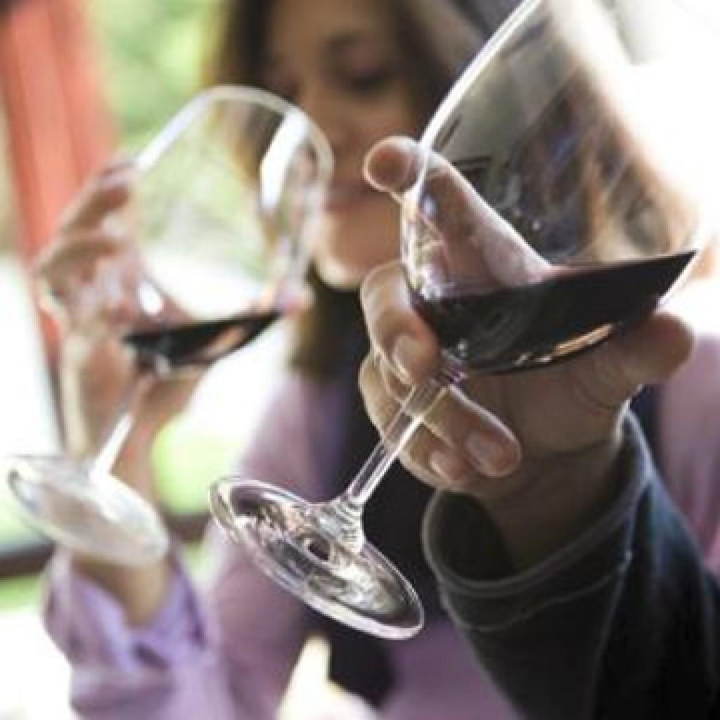 Wine tasting evenings